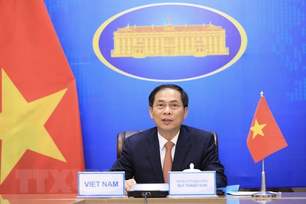 Foreign minister affirms Vietnam's commitments to Mekong-Ganga Cooperation hinh anh 1