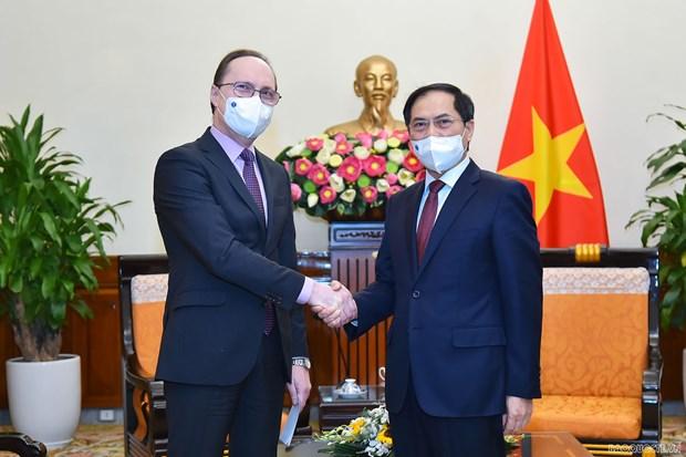 Vietnam treasures comprehensive strategic partnership with Russia: FM hinh anh 1