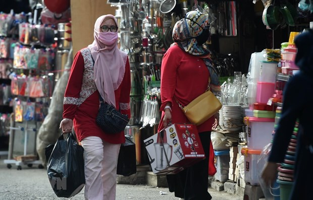 Indonesia's central bank revises down economic growth forecast hinh anh 1