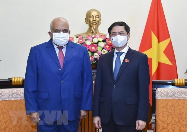 Foreign Minister receives new Cuban Ambassador hinh anh 1