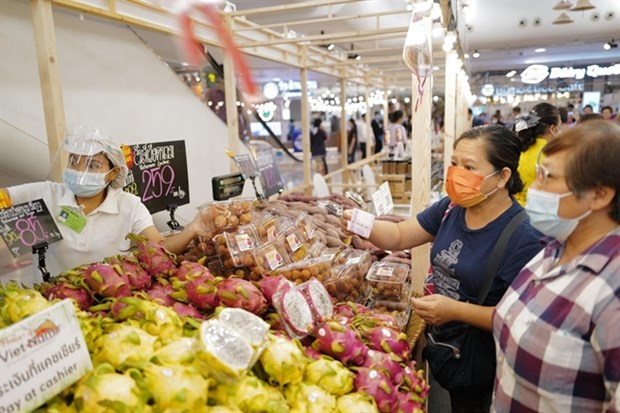 Vietnamese goods to increase presence on foreign shelves hinh anh 1