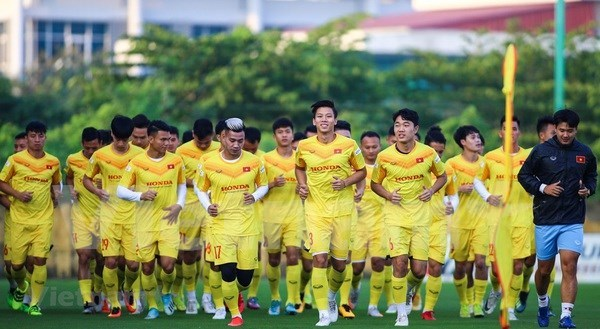 Vietnam's national team to gather in early August in preparation for World Cup qualifiers hinh anh 1