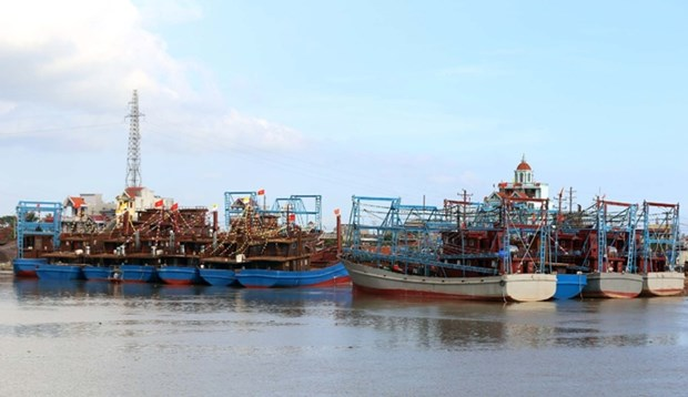 Nam Dinh strives to fight IUU fishing hinh anh 1