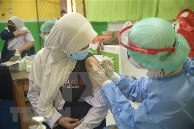 Indonesia aims to vaccinate over 200 million citizens hinh anh 1