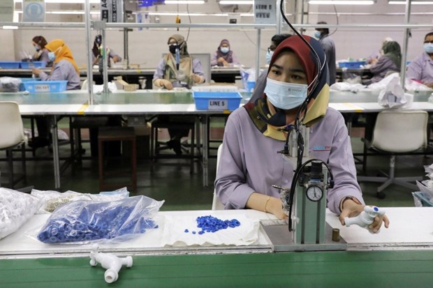 Malaysia's SMEs growth contracts for first time last year hinh anh 1