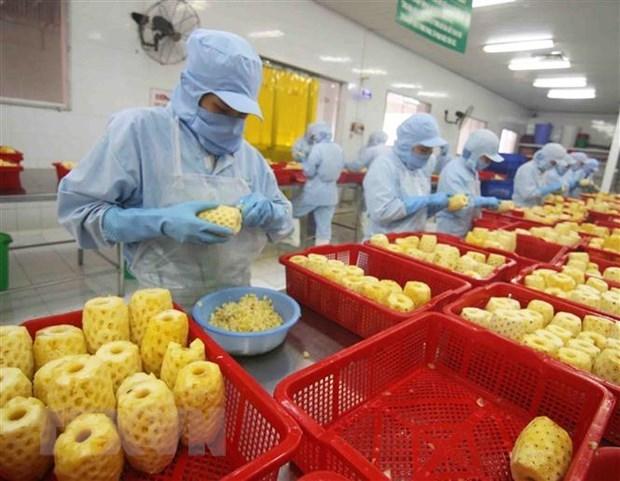 EVFTA fuels Vietnam's imports from EU hinh anh 1