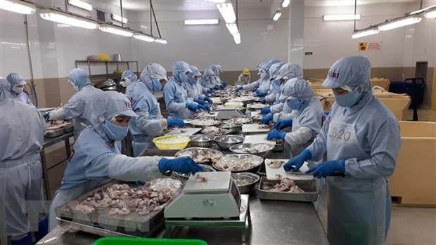 Vietnam sees 15.5 percent rise in exports in EU market hinh anh 1