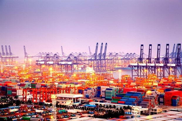 Shipping companies enjoy positive earnings thanks to high sea freight rates hinh anh 1