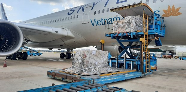 Over 203,000 rapid COVID-19 test kits donated by Germany arrive in HCM City hinh anh 1