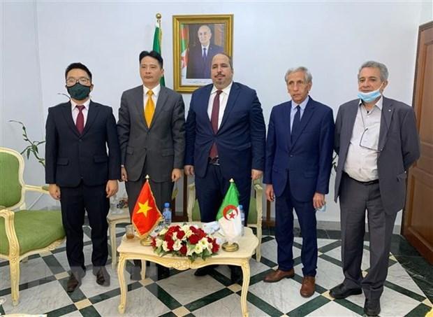 Vietnamese, Algerian parties bolster relationship hinh anh 1