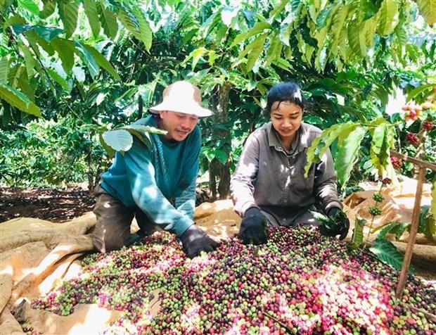 Việt Nam muốn đẩy mạnh xuất khẩu nông sản và thủy sản sang Algeria và Senegal