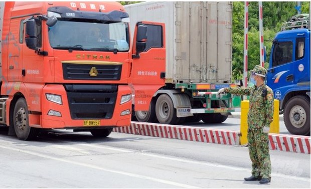 Concerted efforts needed to ease barriers to Vietnam-China agricultural trade hinh anh 1