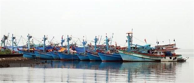 Kien Giang works hard to combat IUU fishing hinh anh 1