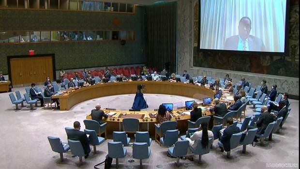 Vietnam hails recent developments in Somalia hinh anh 1