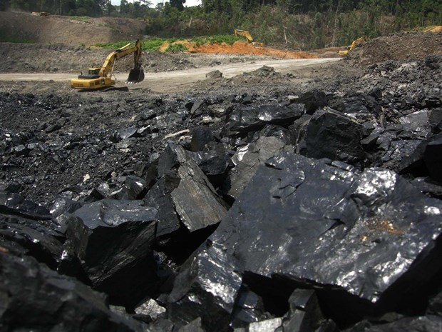 Vietnamese importers warned of 34 suspended Indonesian coal exporters hinh anh 1