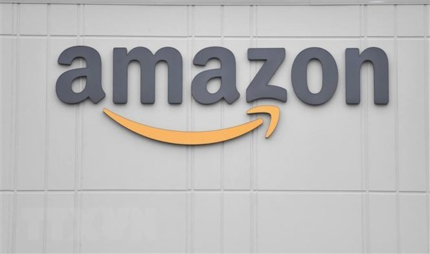 Firms get help to partner with Amazon to fuel export hinh anh 1
