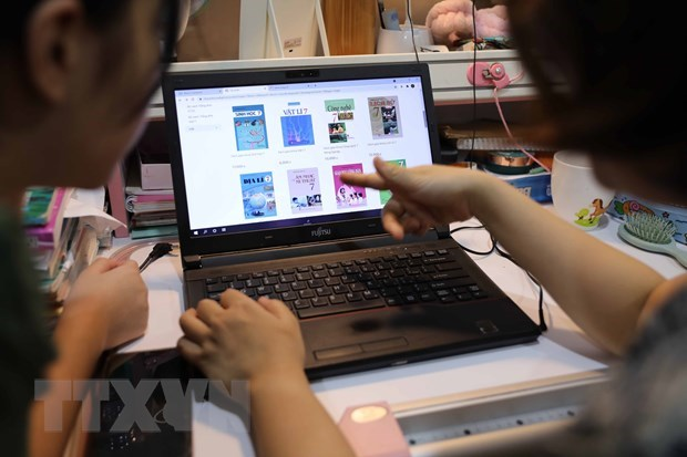 Joint support needed for sustainable e-commerce development: insider hinh anh 1