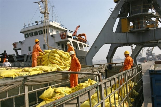 Transport Ministry directs to ease operation of seaports amid pandemic hinh anh 1