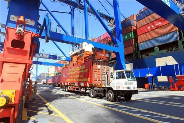 Container cargo via seaports sees double-digit growth hinh anh 1