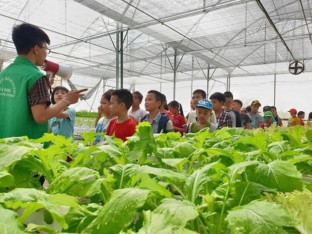 Agritourism expected to bring double benefits to Hanoi hinh anh 1