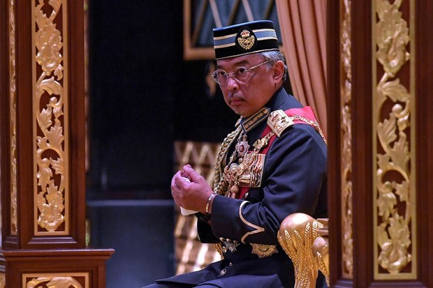 Malaysia's king calls for consensus among political parties hinh anh 1