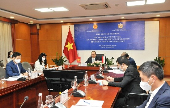 Vietnam, Egypt seek to beef up trade ties hinh anh 1