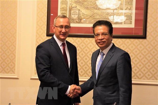Ambassador suggests ways to strengthen ties with Russian oblast hinh anh 1