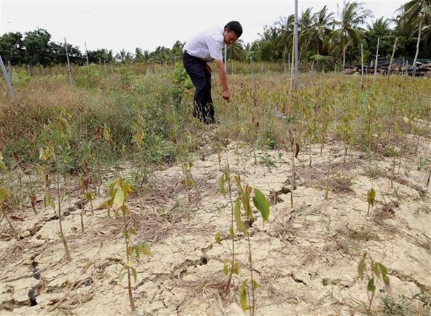 Vietnam strongly commits to responding to climate change hinh anh 2