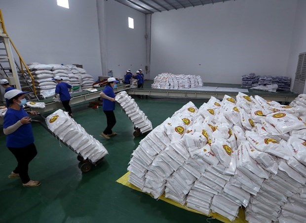 Hanoi donates 6,000 tonnes of rice to HCM City, Binh Duong province hinh anh 1
