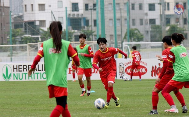 Vietnam to play three matches in 2022 AFC Women's Asian Cup qualification hinh anh 1
