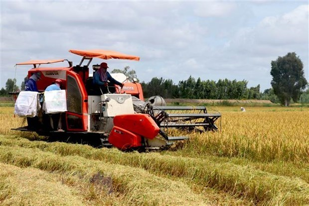 APEC economies commit to 10-year food security roadmap hinh anh 1