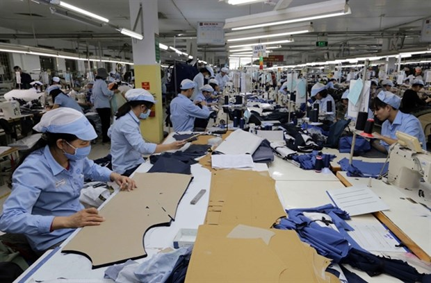 Firms face difficulties due to rigid regulations amid COVID-19: Experts hinh anh 1