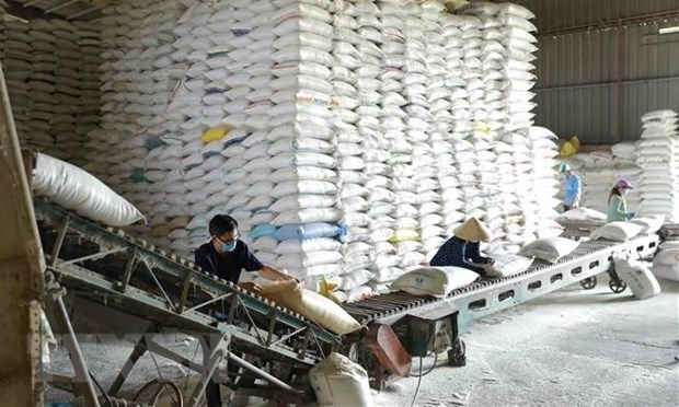 Over 130,000 tonnes of rice allocated to 24 pandemic-hit localities hinh anh 1