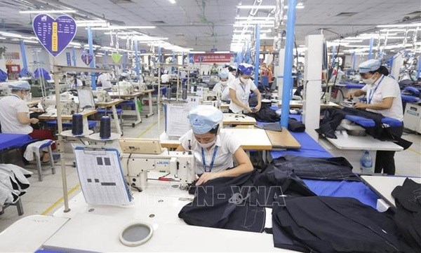 Textile industry faces challenges in meeting export target hinh anh 1