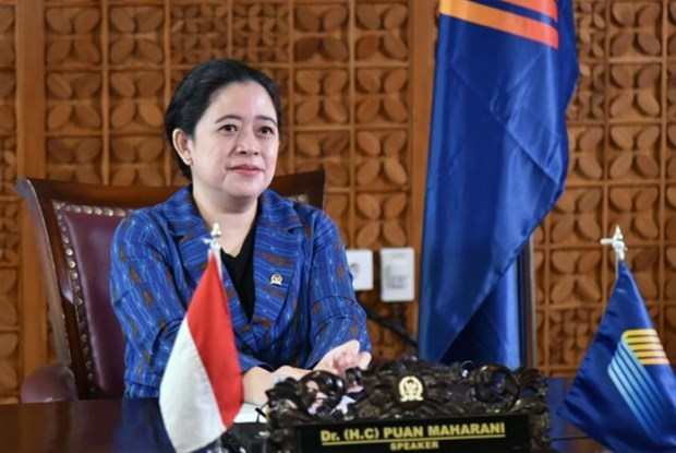 Indonesian House Speaker calls for cooperation to push back COVID-19 hinh anh 1