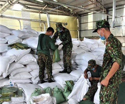 Over 15,300 tonnes of rice to be provided to HCM City, Long An hinh anh 1