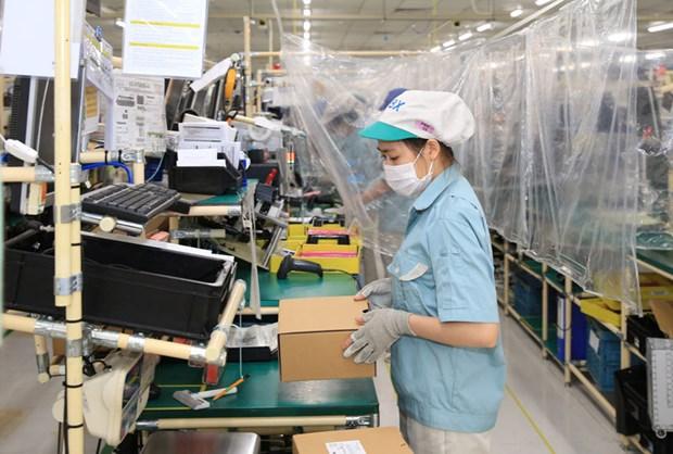 Hanoi flexibly maintains production amid COVID-19 hinh anh 1