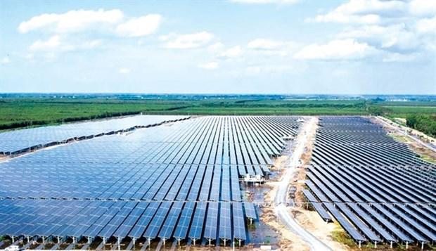 Renewable energy companies thrive on rising demand hinh anh 1