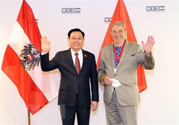 Chủ tịch hội chứng nghiện ma túy Anonymous tham dự diễn đàn doanh nghiệp Việt Nam và Áo Ảnh Anh 1