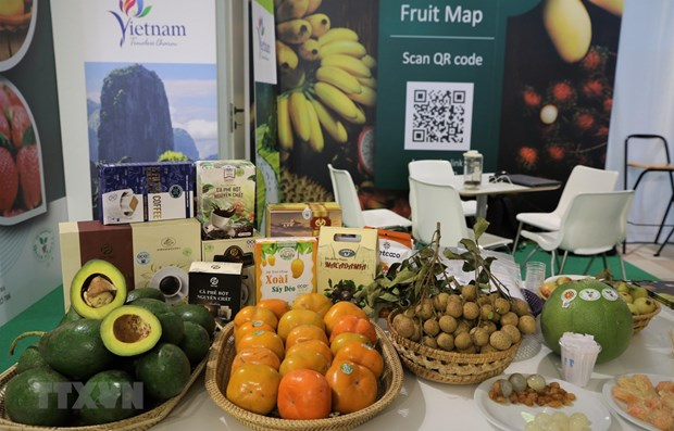 Vietnamese farm produce introduced at fruit & vegetable show in Italy hinh anh 1