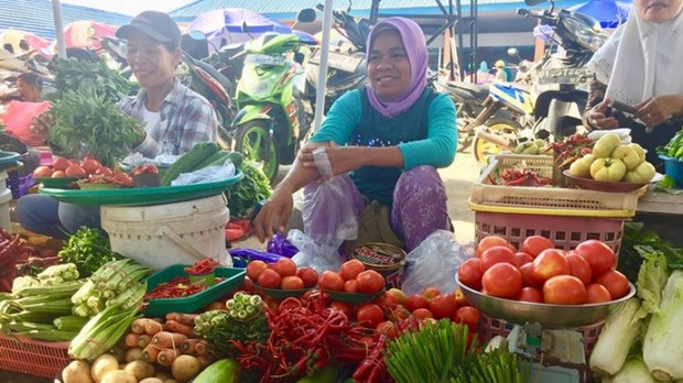 Indonesia, FAO reaffirm stronger partnership for sustainable food systems hinh anh 1