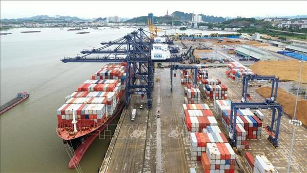 Ship of world's largest container shipping company docks at Cai Lan port hinh anh 1