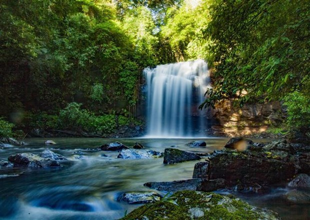 Vietnam's biosphere reserves earn UNESCO recognition hinh anh 2