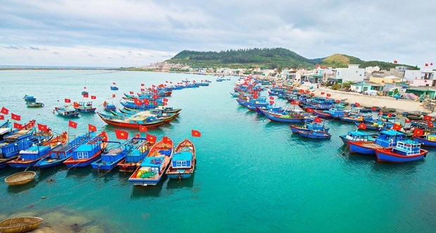 Tien Giang exerts every effort to combat IUU fishing hinh anh 1