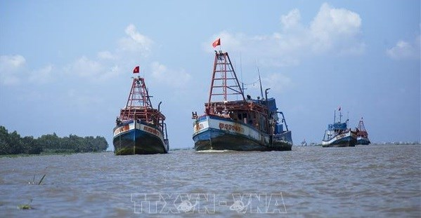 Kien Giang aims to end IUU fishing in 2021 hinh anh 1