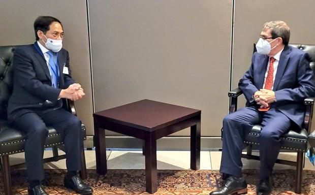 Le ministre des Affaires étrangères Bui Thanh rencontre ses homologues étrangers à New York Hinh Anh 1