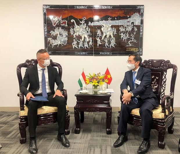 Le ministre des Affaires étrangères Bui Thanh rencontre ses homologues étrangers à New York Hinh Anh 3