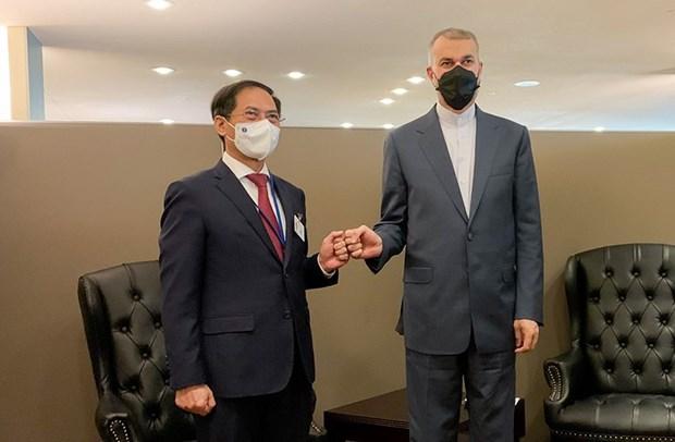 Le ministre des Affaires étrangères Bui Thanh rencontre ses homologues étrangers à New York Hinh Anh 4
