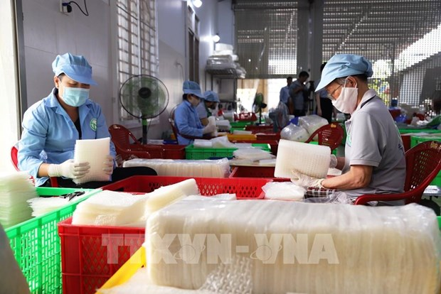 Nearly 70 percent of firms in Tay Ninh resume production hinh anh 1
