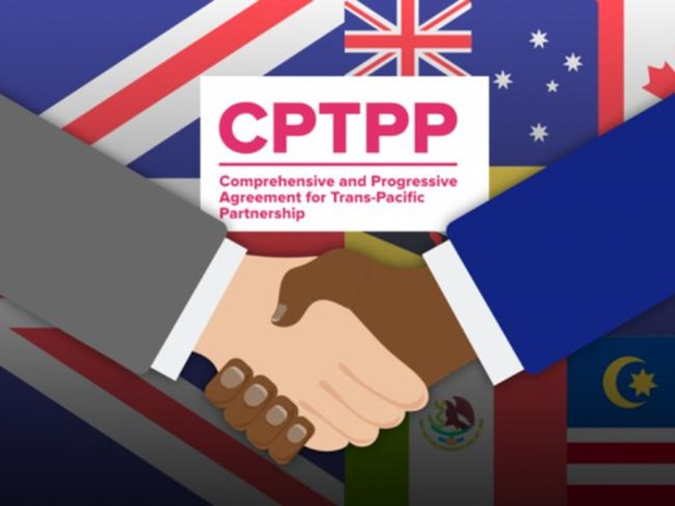 CPTPP member states discuss UK's entry hinh anh 1
